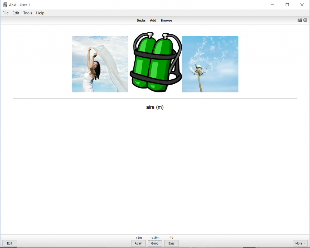 Screenshot of ANKI
